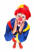 picture of joker  - High Angle View Of A Shocked Joker White Background - JPG
