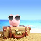 picture of piggy  - Suitcase with piggy bank in sunglasses on tropical beach - JPG