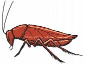 stock photo of cockroach  - hand drawn sketch cartoon illustration of cockroach - JPG