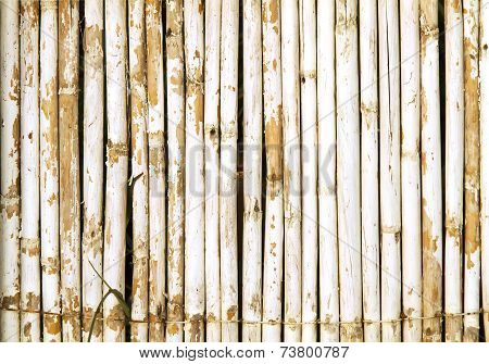 Old Bamboo Wall With Weathered White Paint Background Texture