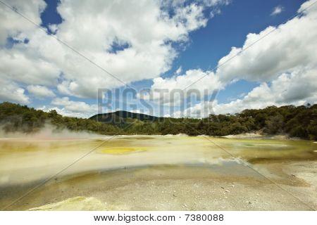 Hot Springs Natural Park In Rotoroa, New Zealand