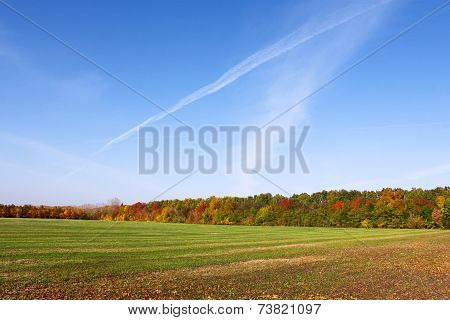 Picturesque Autumn Rural Landscape