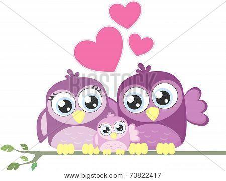 love family birds