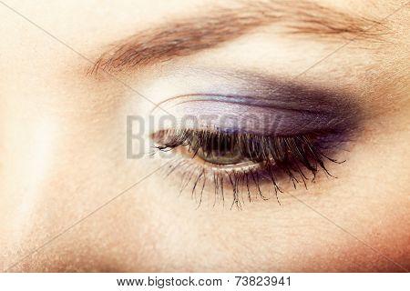 Closeup Beautiful Female Eye With Make-up Visage.