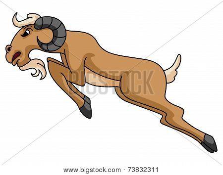 sheep horn