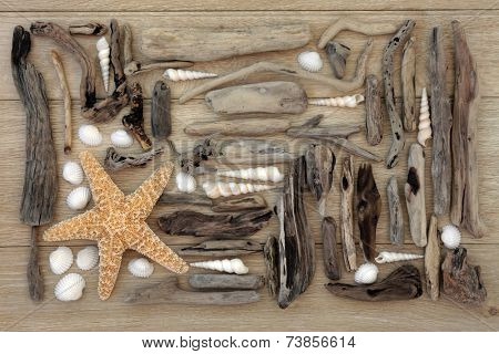 Starfish and sea shell collage with driftwood over oak wood  background.