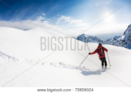 Skiing: male skier in powder snow. Italian Alps, Europe.