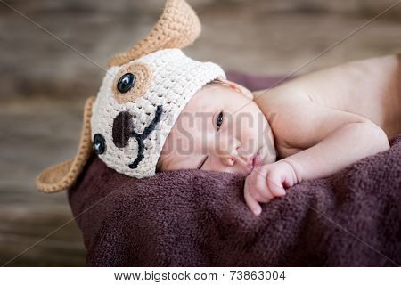 Funny Sleepy Cute Newborn Baby