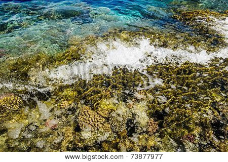 The Waves Roll On A Coral Reef In The Red Sea, Egypt