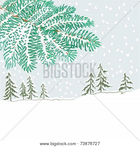The Branch Of Spruce And Winter Landscape Vector