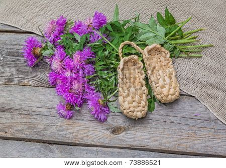 Bouquet Of Purple Cornflowers And Bast Shoes