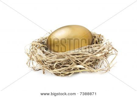 Golden Nest Egg Isolated On White