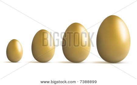 Golden Egg Growing
