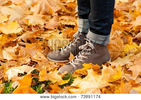 Image of legs in boots on autumn leaves outdoors
