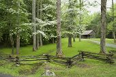 stock photo of cade  - A small rustic cabin nestled in the woods in cades cove tennessee - JPG