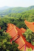 stock photo of solemn  - Temple Zen Buddhism solemn Buddha china Seclusion - JPG