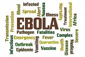 picture of vomit  - Ebola Word Cloud on White Background - JPG