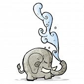 image of squirt  - elephant squirting water cartoon - JPG