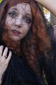foto of black widow spider  - Pretty redhead wearing black dress and black veil in forest - JPG