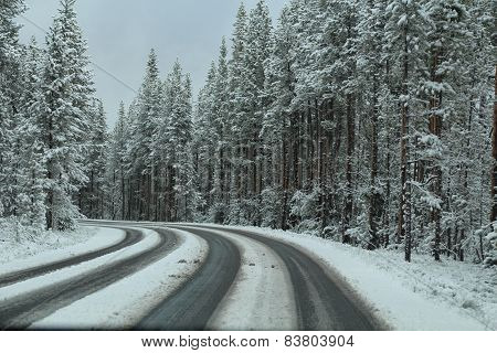 Lonely, Snowy Road