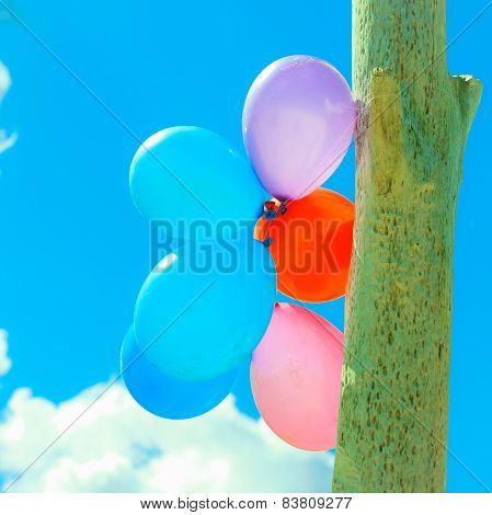 Balloon Chain In The Sky