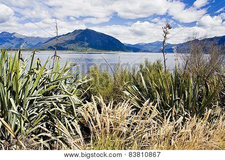 Lake Brunner, New Zealand