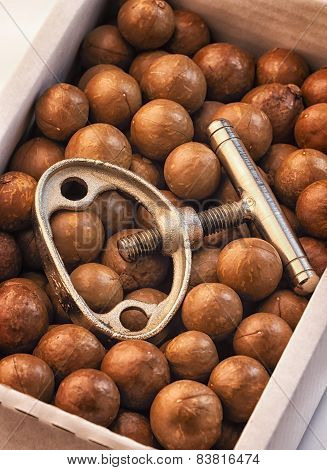 Macadamia Nuts And Nutcracker