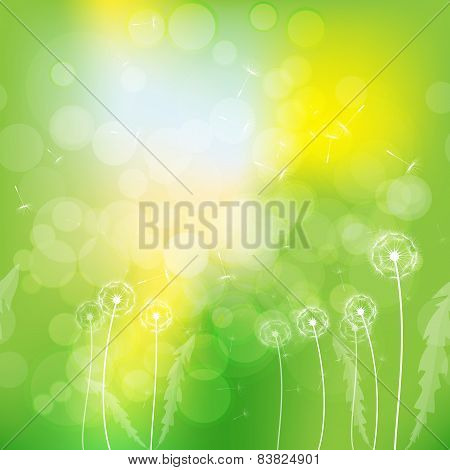 background dandelions on yellow-green background.vector illustration