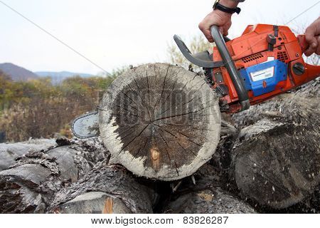 The Sharp Saw Quickly Cuts Wood