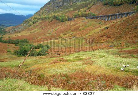 Scottish Highlands #2
