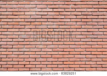 Brick wall with cement joints