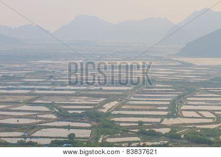 Shrimp farms and limestone mountains