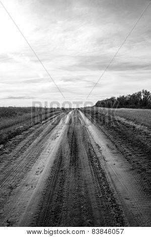 Old Dirt Road