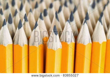 Stack Of Pencils Ready To Use For Work