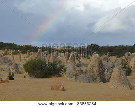 Pinnacle in Nambung national park