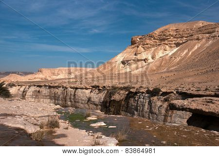 Water Spring In A Desert