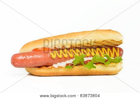 Appetizing hot dog