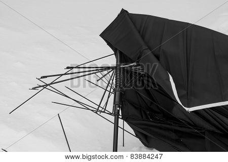 Broken Umbrella.