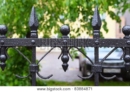 Fragment Of  Iron Fencing During A Summer Rain