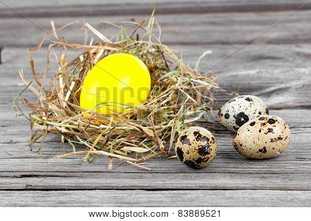Easter Egg In Nests And Quail Eggs On Wooden Background
