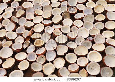 Coconut Copra Drying In Kerala