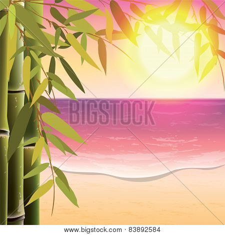Bamboo Trees And Leaves On The Sand Beach Background At Sunset Time.
