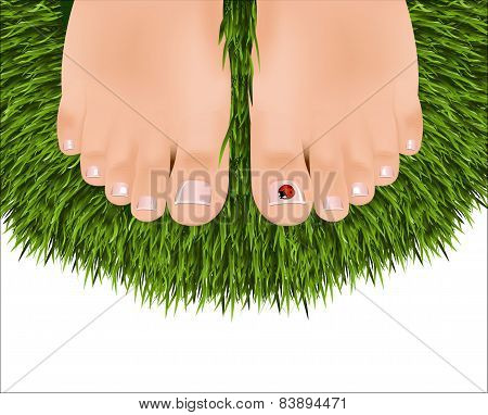 Beautiful Female Feet With A Pedicure On A Background Of Green Grass. Ladybug On A Finger.