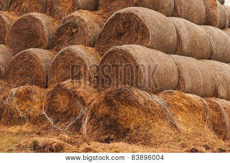 Bala, straw