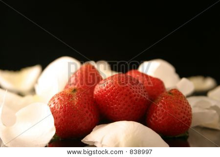 White rose petals and strawberries