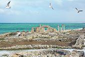 foto of crimea  - Ruins and column in a Khersones - JPG