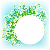 stock photo of small-flower  - Vector card with small white flowers on shining sky blue background - JPG