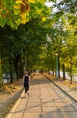 stock photo of stroll  - People running and strolling in a park of the city of Paris - JPG
