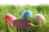 picture of happy easter  - Colorful Easter Background With Three Easter Eggs And Empty Label With Copy Space Or Free Text Or Your Text Here On Green Grass For Happy Easter Seasons Greetings - JPG