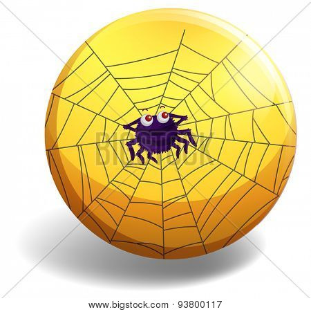 Cute spider making spider web